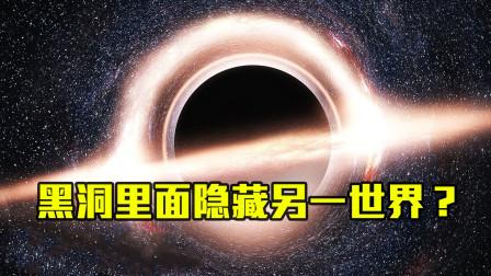 黑洞内部如果存在另一世界,那将存在三级智慧生命!