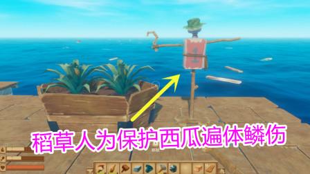 木筏求生06:海鸥爱上了稻草人 可怜稻草人为保护西瓜遍体鳞伤