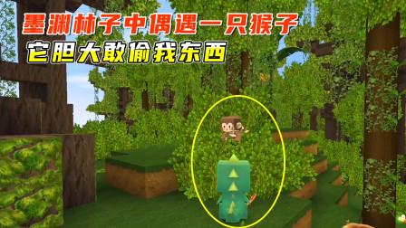 迷你世界雨林生存1:墨渊林子中偶遇一只猴子,它胆大敢偷我东西