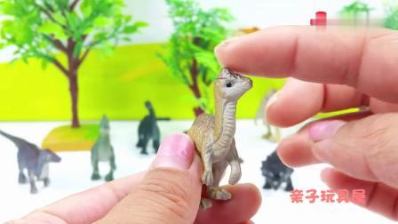 早教益智:世界恐龙玩具硬头龙副栉龙和棘龙
