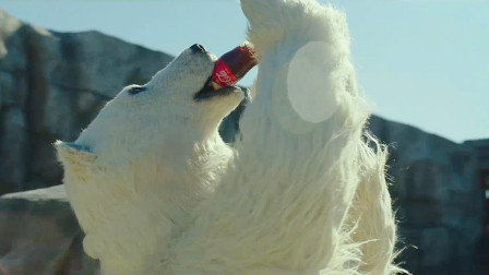 动物园面临倒闭,大白熊上演花式喝可乐,一个周末赚了1千3百万