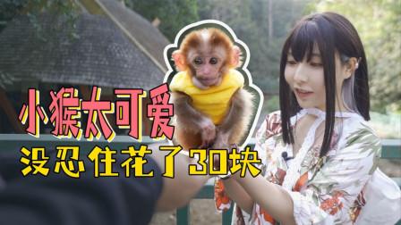 西双版纳热带雨林森林公园遇到小猴子不想走,闪闪吵着花30拍个照