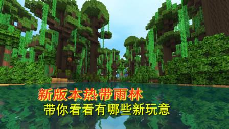 迷你世界热带雨林1:新版本更新热带雨林,带你看看有那些新物品