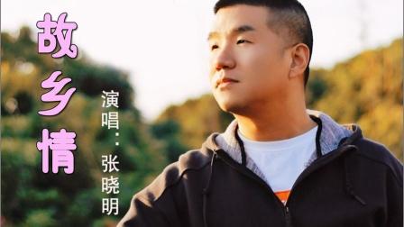 张晓明-《故乡情》DJ何鹏版,一首思乡曲,撩动游子心!