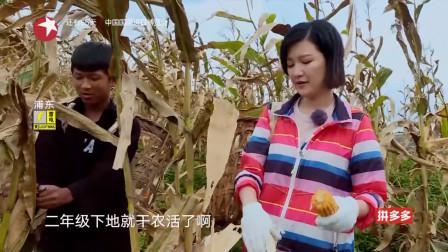 我们在行动:陈蓉在地里劳动,竟在玉米地里爆发了,生活太辛苦