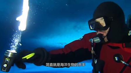 """海洋里的""""死亡冰柱"""",从海面直入海底,所到之处堪称动物灾难"""
