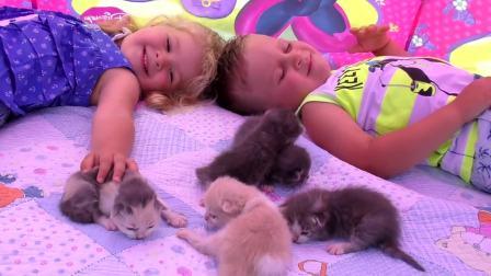 萌娃小可爱看小猫咪们睡觉,小可爱感觉小猫咪还好小呀