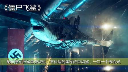 纳粹德军把鲨鱼变战机,不料遇到美军的巨齿鲨,一口一个被吞光!