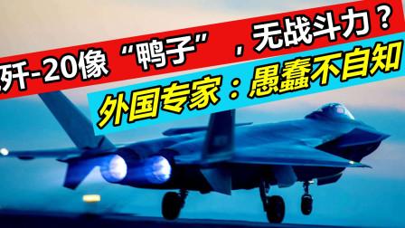 歼-20体型像鸭子,无战斗力?外专家:说我高估中国人?愚蠢不自知