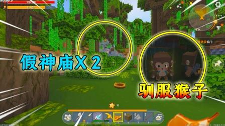 迷你世界神秘雨林:前往最新的雨林,居然发现两个假的神庙!