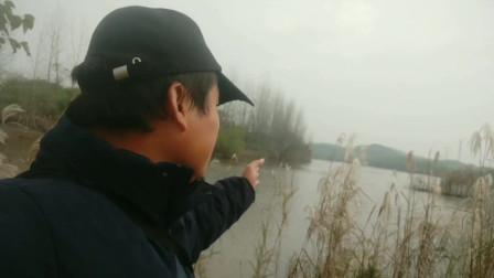 带你看上次钓鱼爆护的地方,如果是你的钓鱼自留地,你会怎么做?