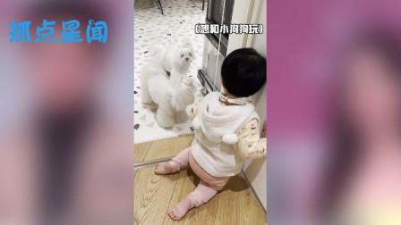 小女儿想和狗狗玩请求爸爸的帮助,陈赫却不理会,小女儿的举动够我笑十天
