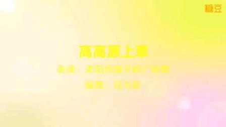 耒阳狮子岭广场舞《高高原上草》,原创:花与影