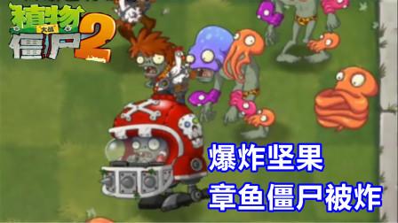 植物大战僵尸2:爆炸坚果高级任务5-6天,可恶的章鱼僵尸被炸!