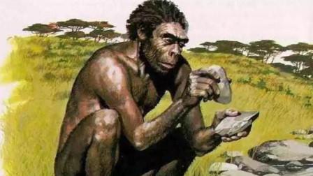 与人类同祖先的罗百氏傍人,明明出现更早,为何灭绝了?