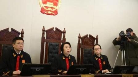 湖南11岁女孩失踪3个月被迫接客上百次,家属索赔184万