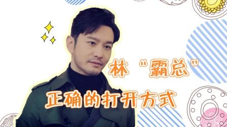 林中硕版霸道总裁,你爱了吗?