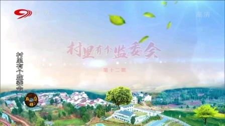 麻辣烫:村里有个监委会(十二)