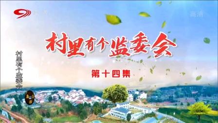 麻辣烫:村里有个监委会(十四)