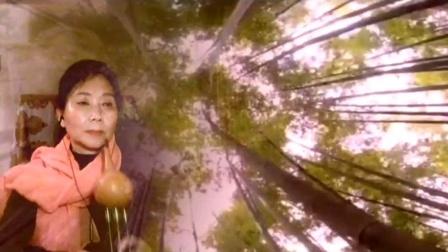 葫芦丝《竹楼情歌》尖椒