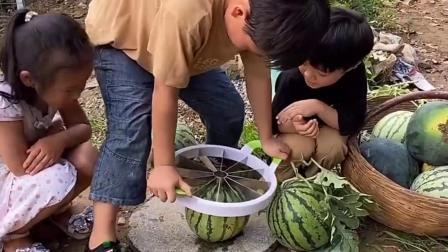 亲子游戏:哥哥要给大家切一个西瓜