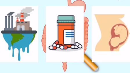 哪些因素影响肠道菌群建立