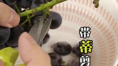 如何快速清洗葡萄呢?