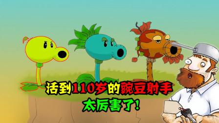 阿涵说:当豌豆射手活到110岁!竟然能轻松消灭巨人僵尸,真厉害
