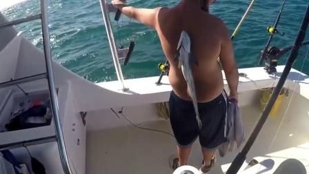 世界上最懒的鱼,吸在人身上就不想下来,还跟着鲨鱼混吃混喝