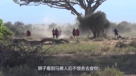 马赛人太厉害,狮子被杀得求饶,镜头记录全过程!