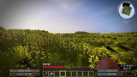 【小卢】我的世界1.14.4挖矿与砍杀生存系列EP1:森林大火,满地菜花
