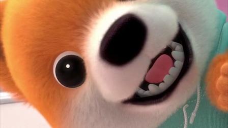 搞笑动画:你家狗子是不是也这样