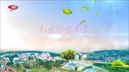 麻辣烫:村里有个监委会(十六)