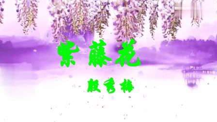紫藤花   殷秀梅