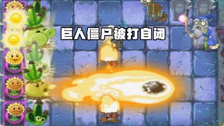 植物大战僵尸2:这么大的火球能把巨人僵尸打自闭太无情了