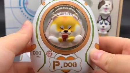 来拆个可爱柴犬充电宝吧,居然还可以换小狗!