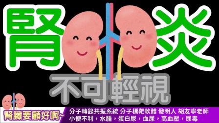 【中文字幕】wellness 腎臟要顧好啊~  小便不利,水腫,蛋白尿,血尿,高血壓,尿毒...
