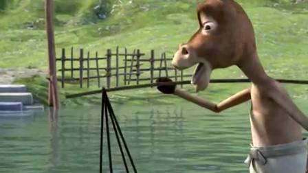 城里的兔子遇上了乡下的驴子....哈哈