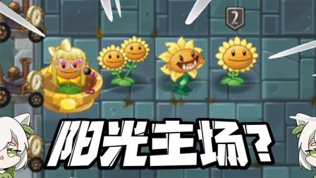 植物大战僵尸:阳光的上限是多少?小蛙不小心把向日葵都带上了