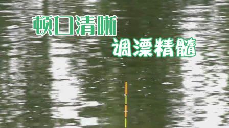 同样钓鱼,浮漂动作却没有别人顿口清晰,这些技巧才是调漂精髓