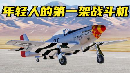 """5分钟内,教你起飞一架年轻人可能拥有的""""野马""""战斗机!战争模拟"""