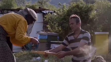 《蜜蜂之地》03新邻居又会带来什么呢?