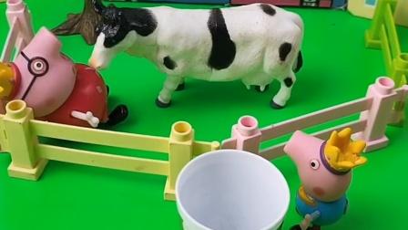 猪爸爸去给乔治挤牛奶,乔治也太任性了