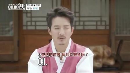 韩国节目:中国大妈在韩国展示蓑衣刀法,黄瓜切完像弹簧
