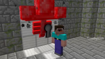 我的世界动画-菜鸟的红宝石凋灵