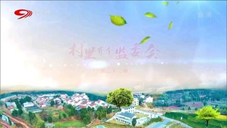 麻辣烫:村里有个监委会(二十二)