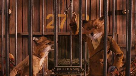 《了不起的狐狸爸爸》05狐狸爸爸又去偷鸡了