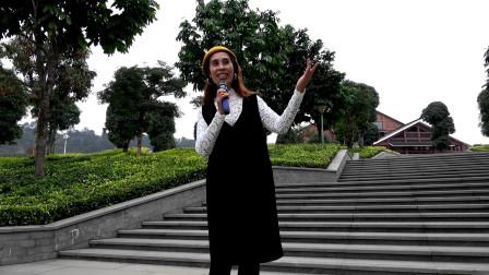 歌曲欣赏《吐鲁番的葡萄熟了》—多情的土地