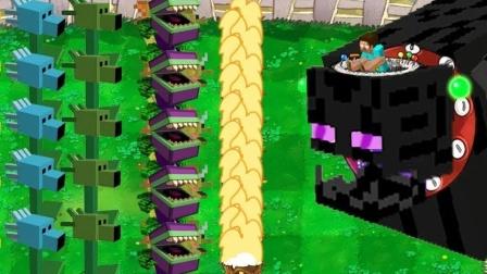 植物大战僵尸:史蒂夫来到我僵尸的世界