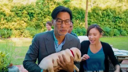 大叔救了小狗一次,狗子长大守护他一生!